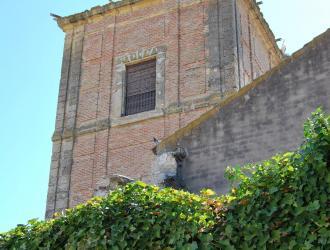 Torre Mocha