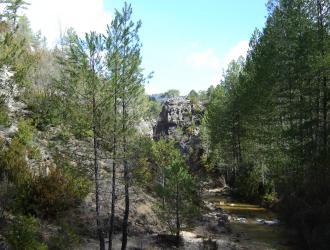 Serranía Alta