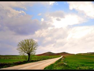 Monreal Del Llano