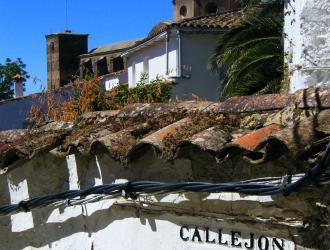 Castaño Del Robledo