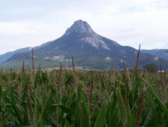 Etxarri ( Aranatz )
