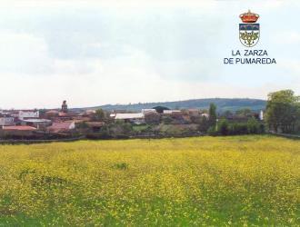 La Zarza de Pumareda