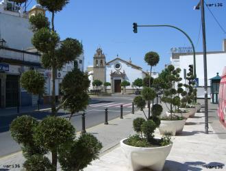 Campiña De Sevilla