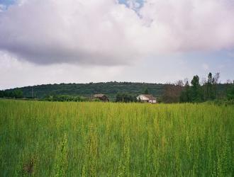 Baix Camp