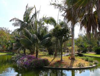 Botànic Cullera