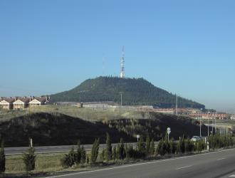 Tierra De Pinares