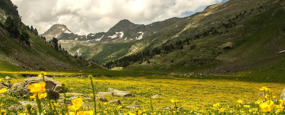 Pirineo Aragones