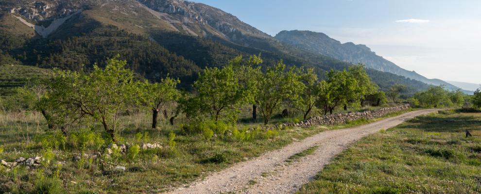Sierra De La Serrella
