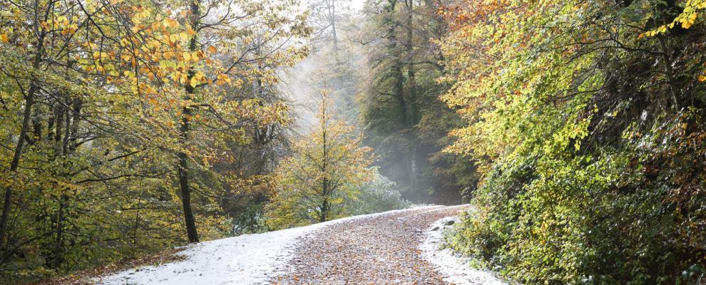 Valle De Cabuérniga