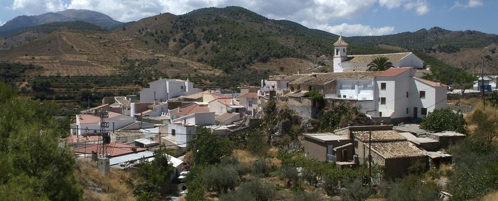 Bayarque