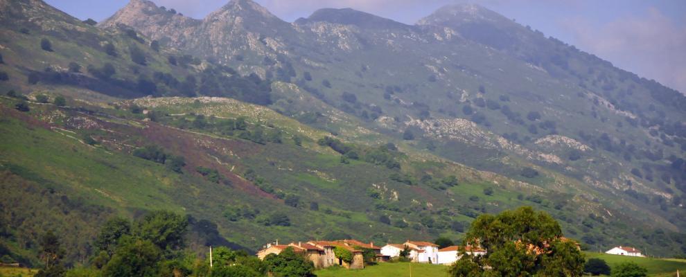 Boquerizo