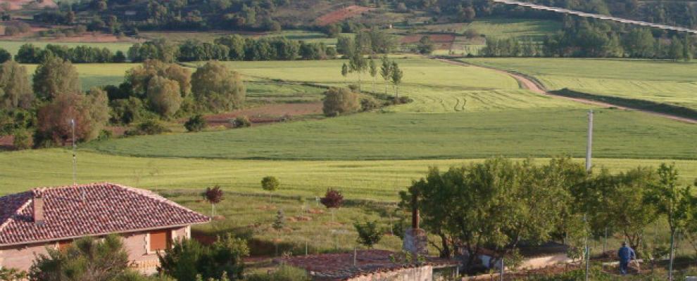 Torrecilla Del Monte