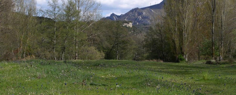 Valle De Manzanedo