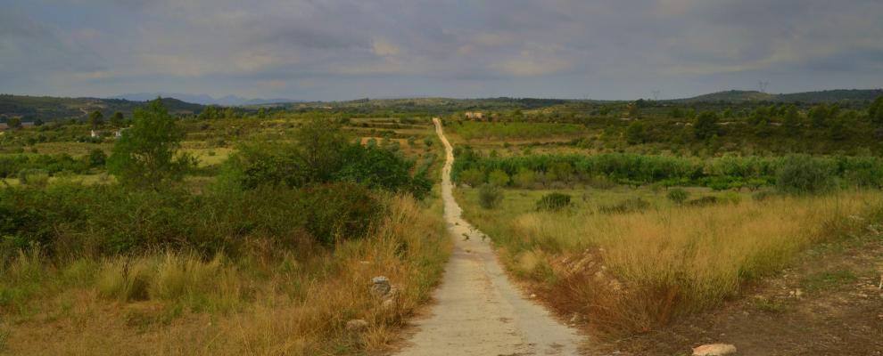 La Plana Alta