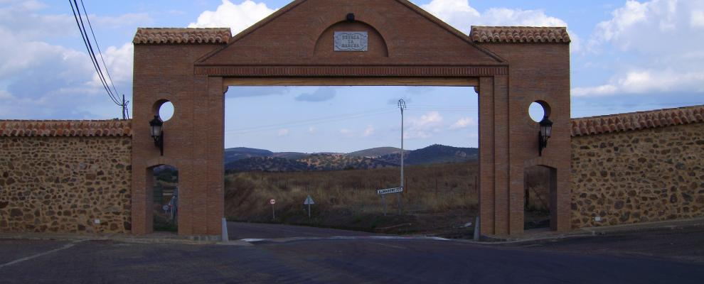 Almadenejos