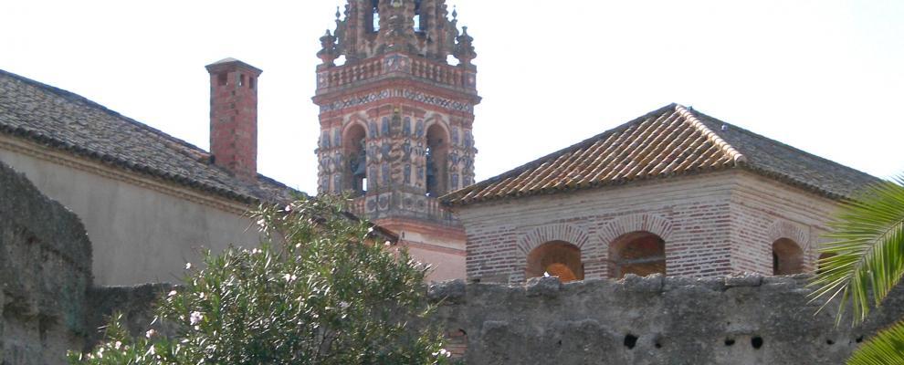Palma Del Rio