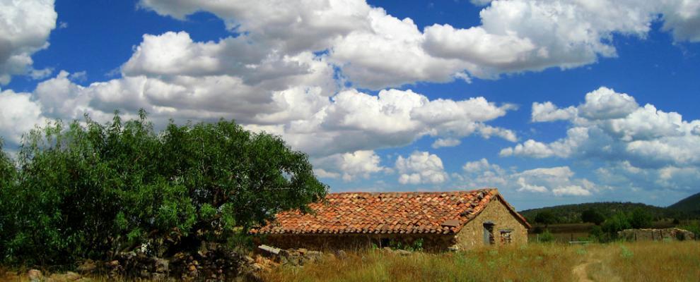 Fuentelespino De Moya