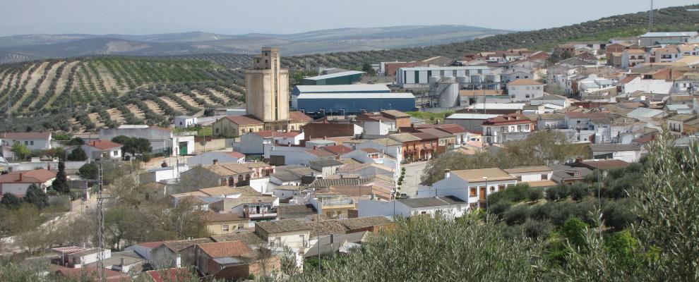 Higuera De Arjona
