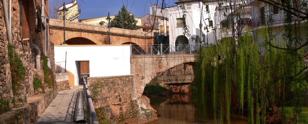 Puente De Genave
