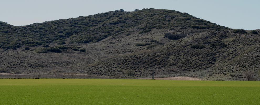 Rivas - Vaciamadrid