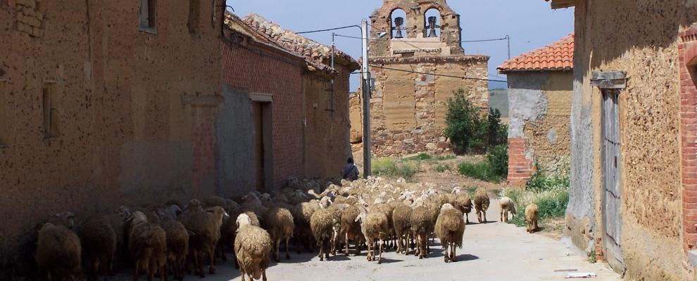 San Roman Del Valle